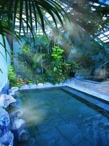 リゾート感たっぷりの緑に囲まれた大浴場のジャングル風呂。日帰りも有り。