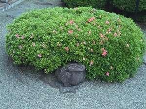 【玄関】〇蛙石がお出迎え♪