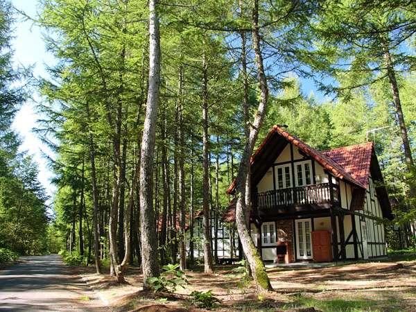 森の中のフェーリエンハウス