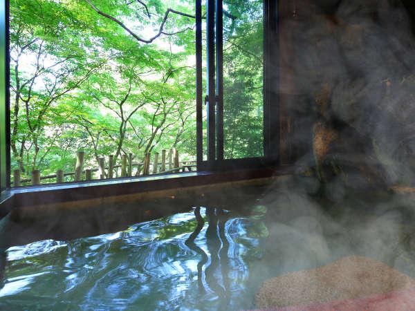*【温泉浴場】2018年リニューアル。大きな窓から天竜峡の自然が湯に映ります