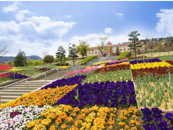 フルーツ公園から望むホテル(春)