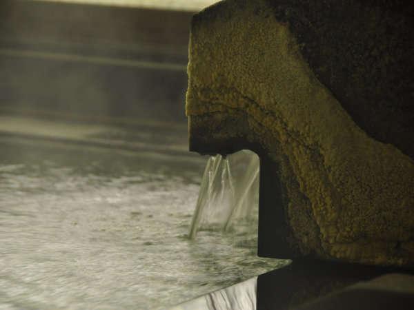 100%源泉かけ流し温泉の湯口には、温泉成分の多い証「湯の花」が咲く