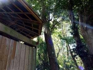 滞在中は何度でも御利用頂ける、森林浴気分満点の貸切岩風呂※半露天デス