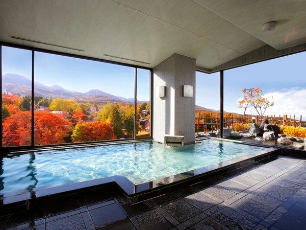 榛名山を眺める男性用内風呂。