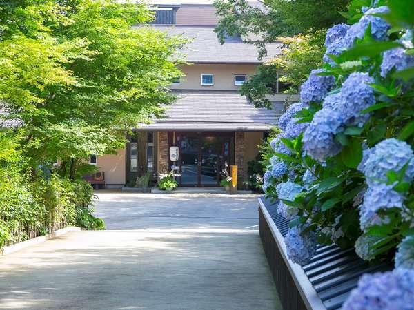 季節では紫陽花がお出迎え