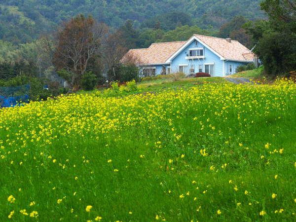 ペンションみなみ風は静かな山里の丘に建つ可愛いペンションです。