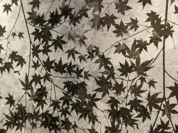 HOTEL FORZA KANAZAWA ART