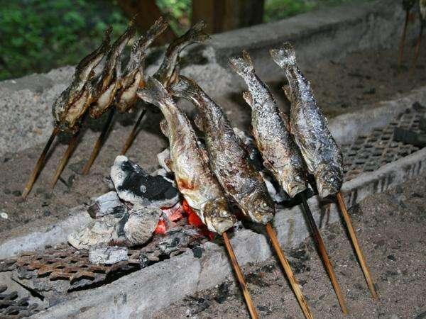 つかみ採りでGETした川魚は、希望により香ばしい炭火焼きで味わえます!