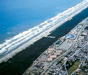 九十九里浜と海浜公園(テニス・夏期はプール)は目の前