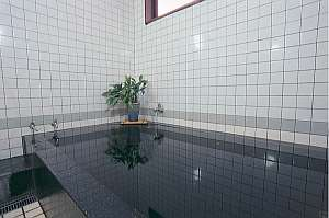 内湯。ナトリウム塩化物泉の温泉がお肌に良いそう