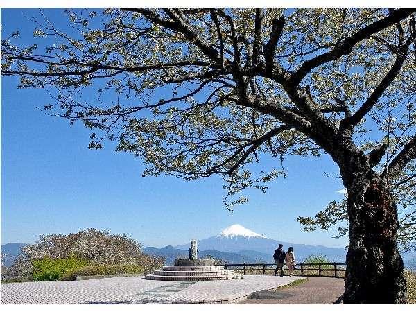 日本平山頂からの富士