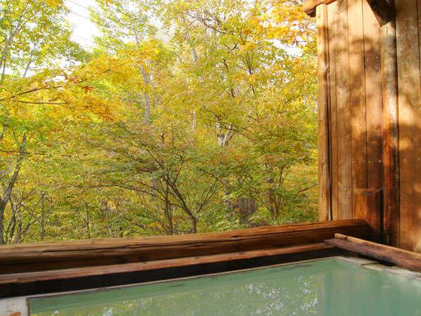季節の移り変わりが楽しめる開放的な露天風呂
