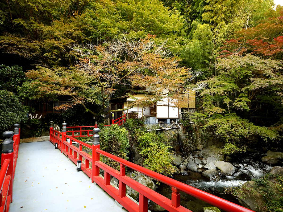 昭和25年に建造された朱塗りの橋を渡り「仙境野天風呂」へ