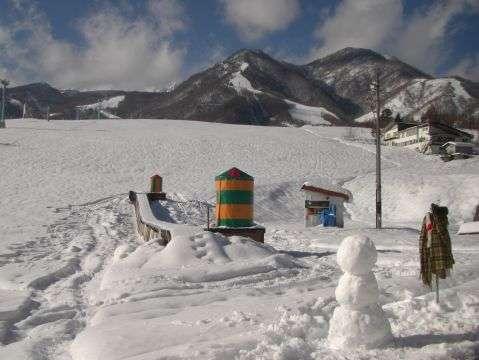 白馬栂池高原スキー場は最高のパウダースノー舞う、ウィンタースポーツの聖地です!