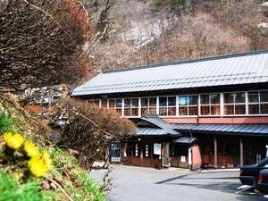 春の花、福寿草を見ながら坂道を下ると自炊部湯治屋へ…