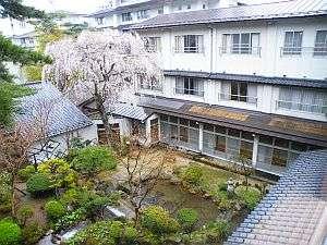 3階の高さほどもある立派な桜が中庭に春を告げる4月
