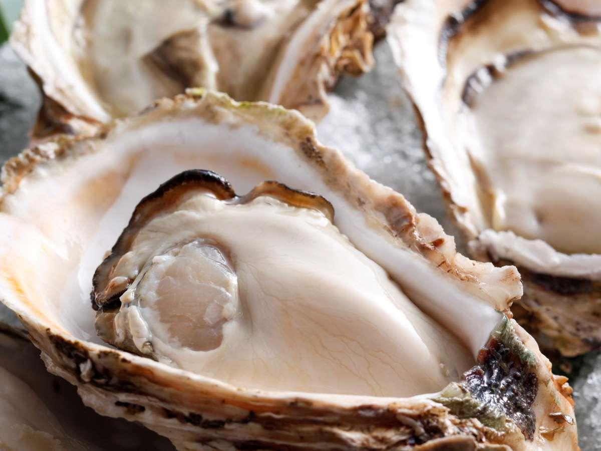 濃厚で芳醇な味のキラッキラ輝くオイスターマイスター厳選の伊根町産「岩ガキ」