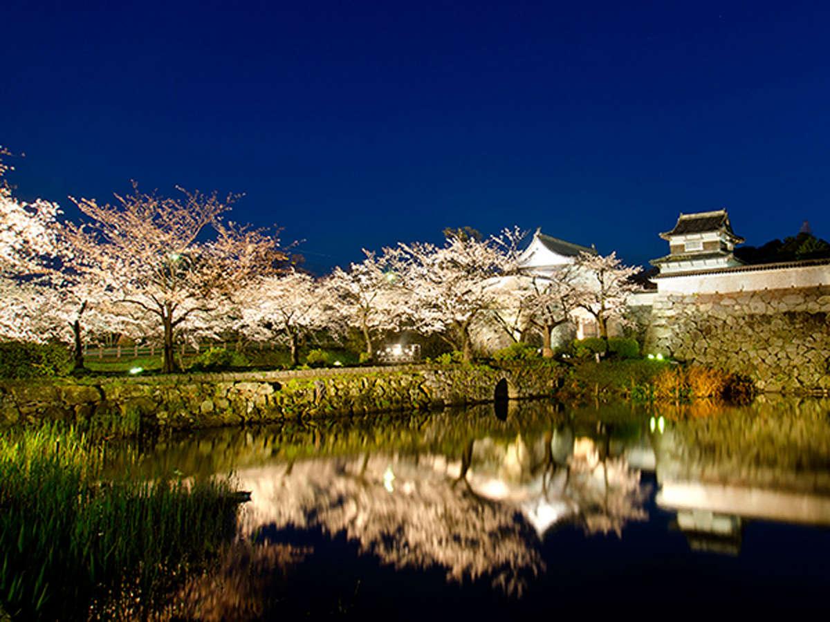 福岡城さくらまつり(提供:福岡市)毎年桜の時期に開催されます。