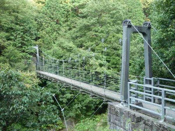 歩いて10分程で、つり橋があります。
