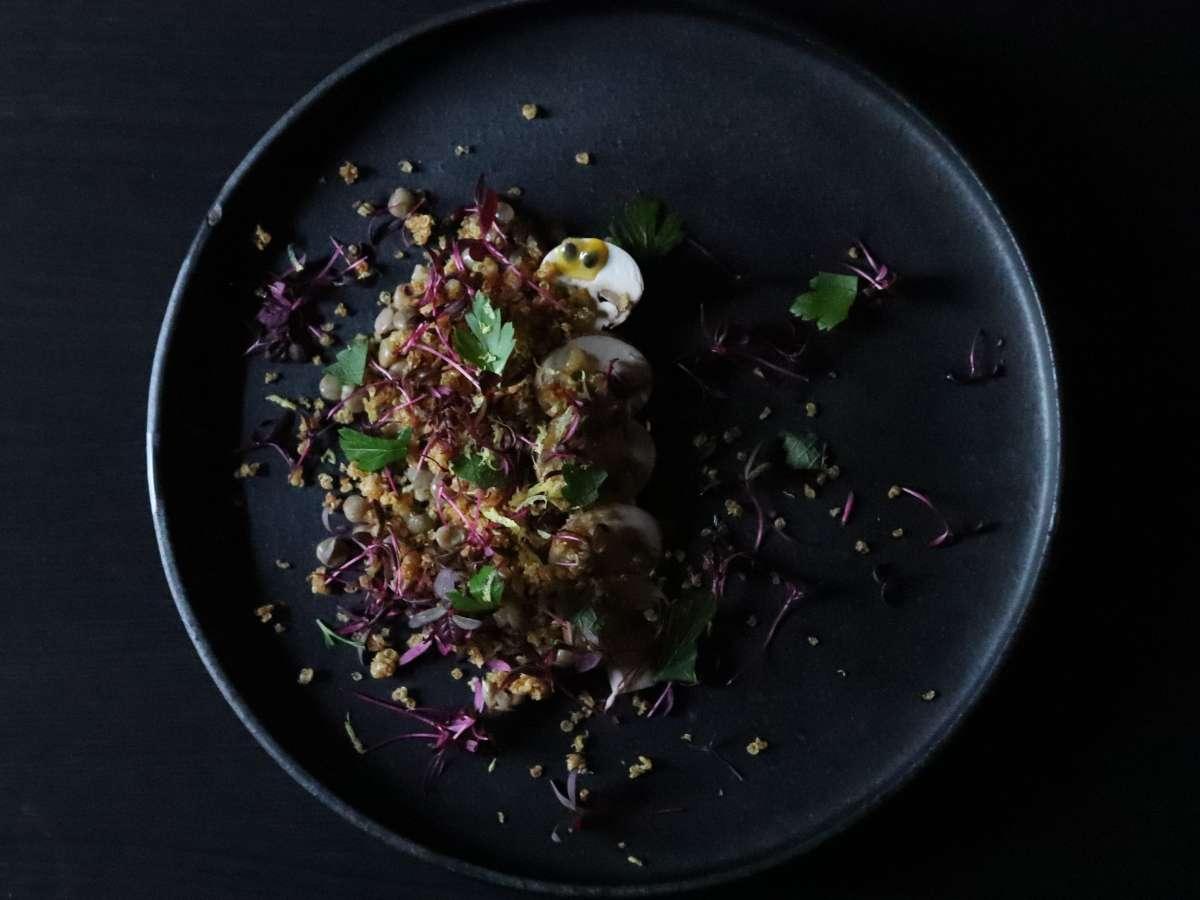 キヌアとレンズ豆 ブラウンマッシュルームの前菜