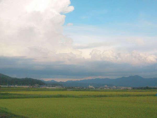 《夏の丹波》青い空と田んぼのグリーンが鮮やかです。