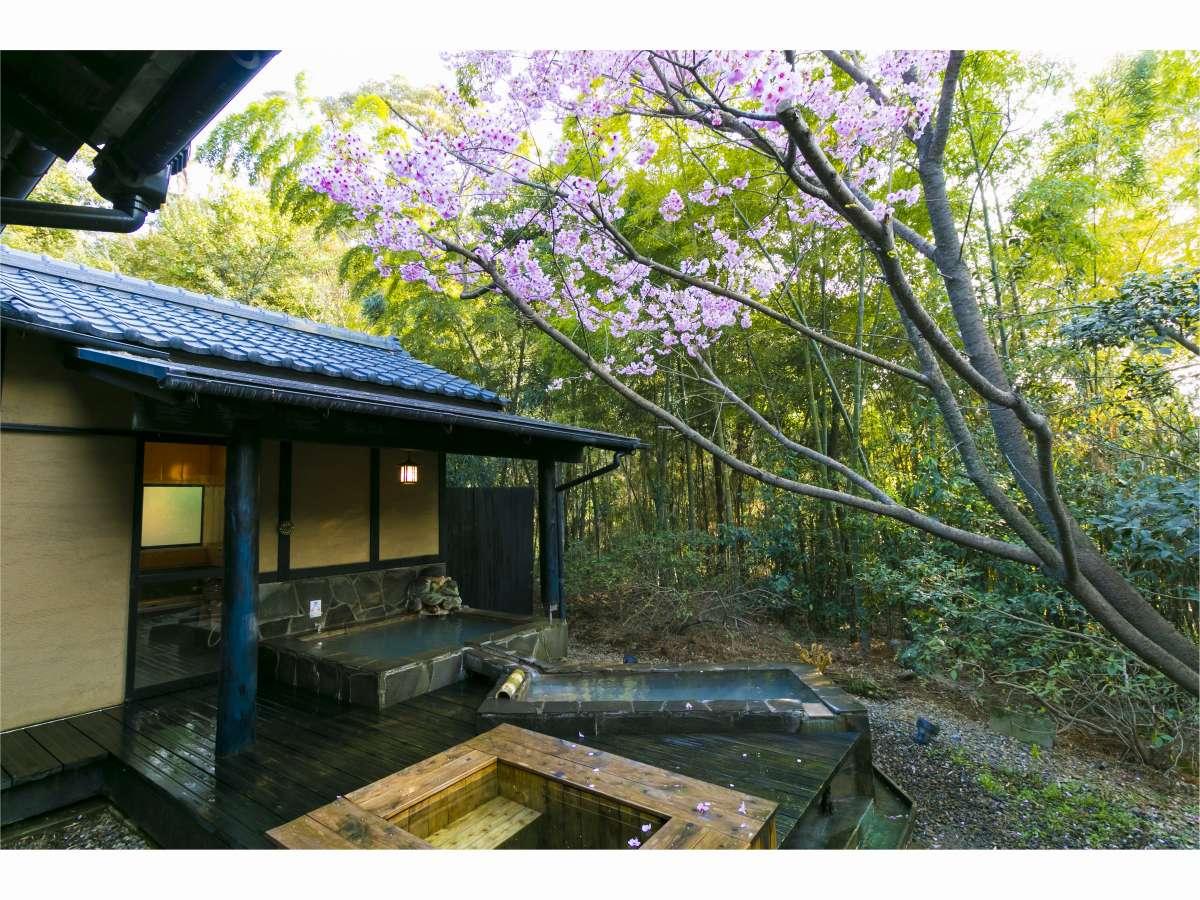 【離れ】自然の中に溶け込むようなお部屋と露天風呂をお楽しみください