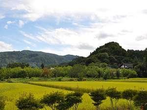 田んぼと山と青い空。ただそれだけで心がほっとする、そんな気分を味わいにきませんか。