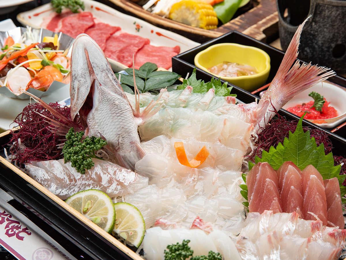*【マル得プラン】旬魚のお造り盛り合わせ(コダイ、イサキなど)