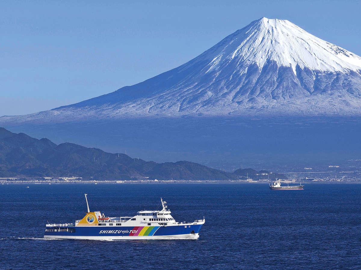 *【周辺観光】駿河湾フェリー/美しい伊豆の風景・富士山の絶景・海の仲間に会いに行きませんか?