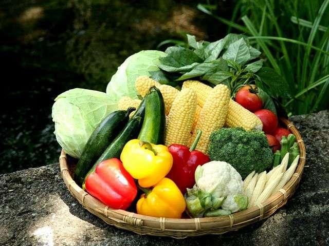 ■旬の野菜をたっぷり味わえる自慢のバイキング夕食※イメージ
