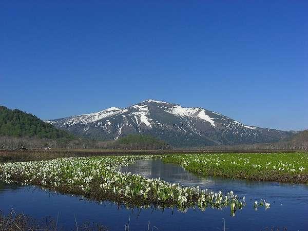 【尾瀬】尾瀬への宿泊拠点としても♪お得な尾瀬ライナー付プランも登山期間は販売いたします。