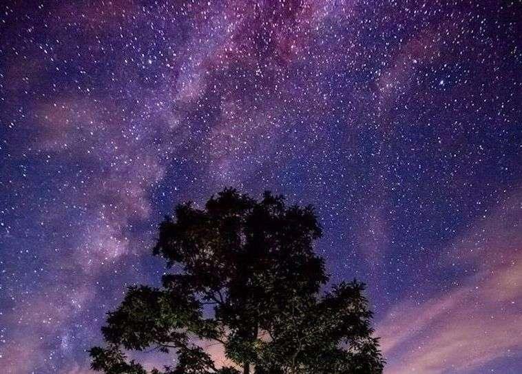南阿蘇の星空