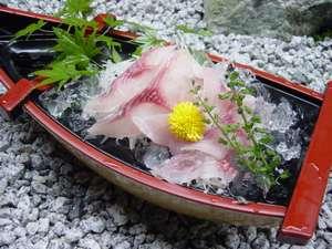名物料理「鯉の洗い」。是非ご賞味ください。