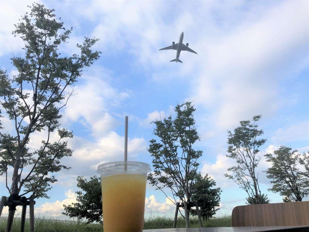 【大迫力】運が良いとホテル真上を飛行機が通過します!飛行機の裏を見れるのはココだけかも...