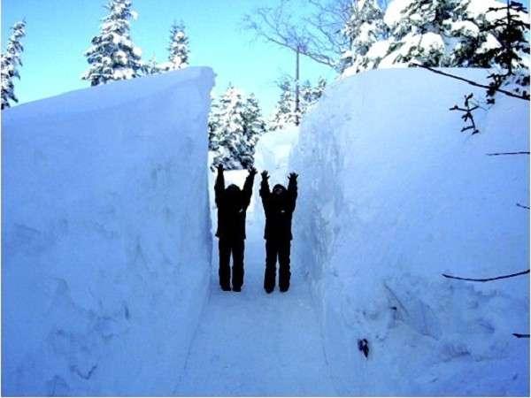 【新穂高温泉】新穂高ロープウェイ 雪の壁