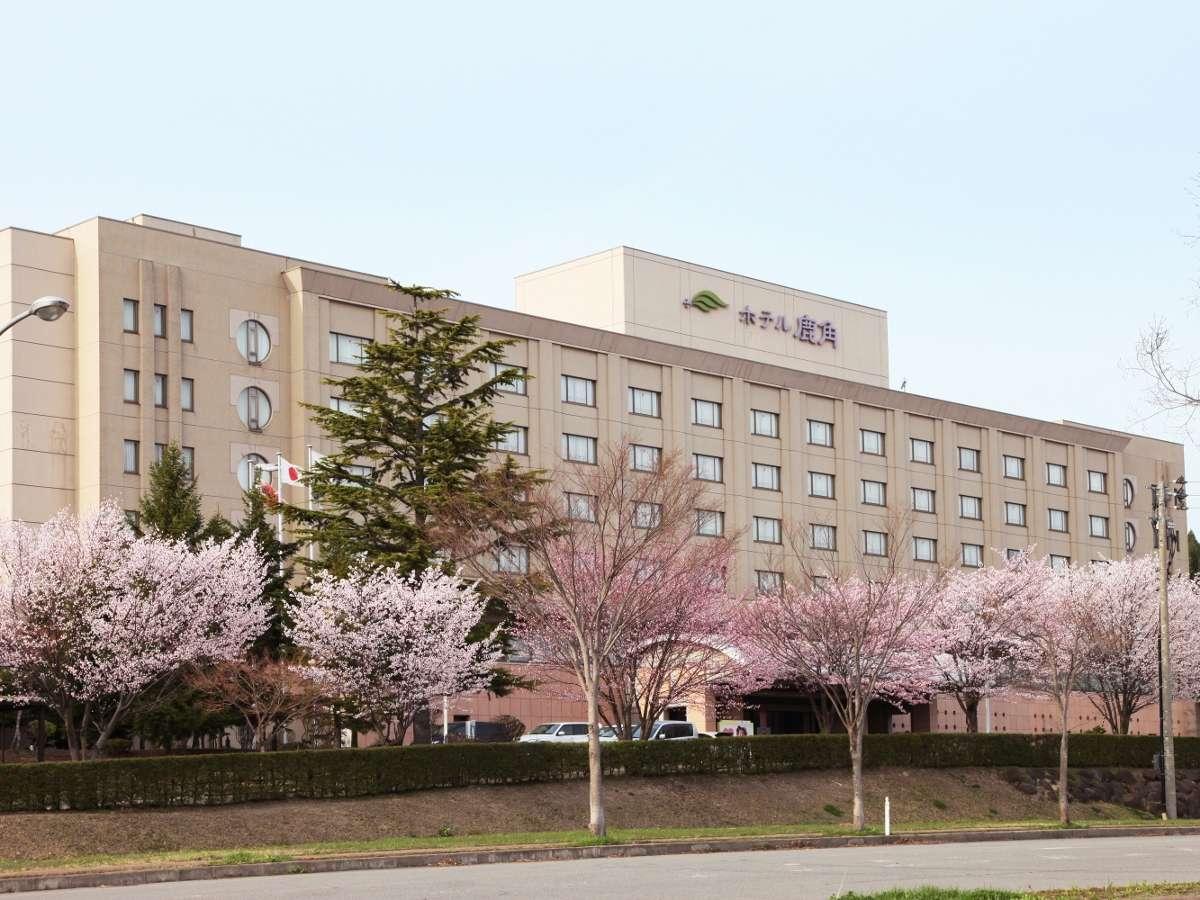 外観【桜の季節】ホテルの前には桜がいっぱい咲き誇ります。