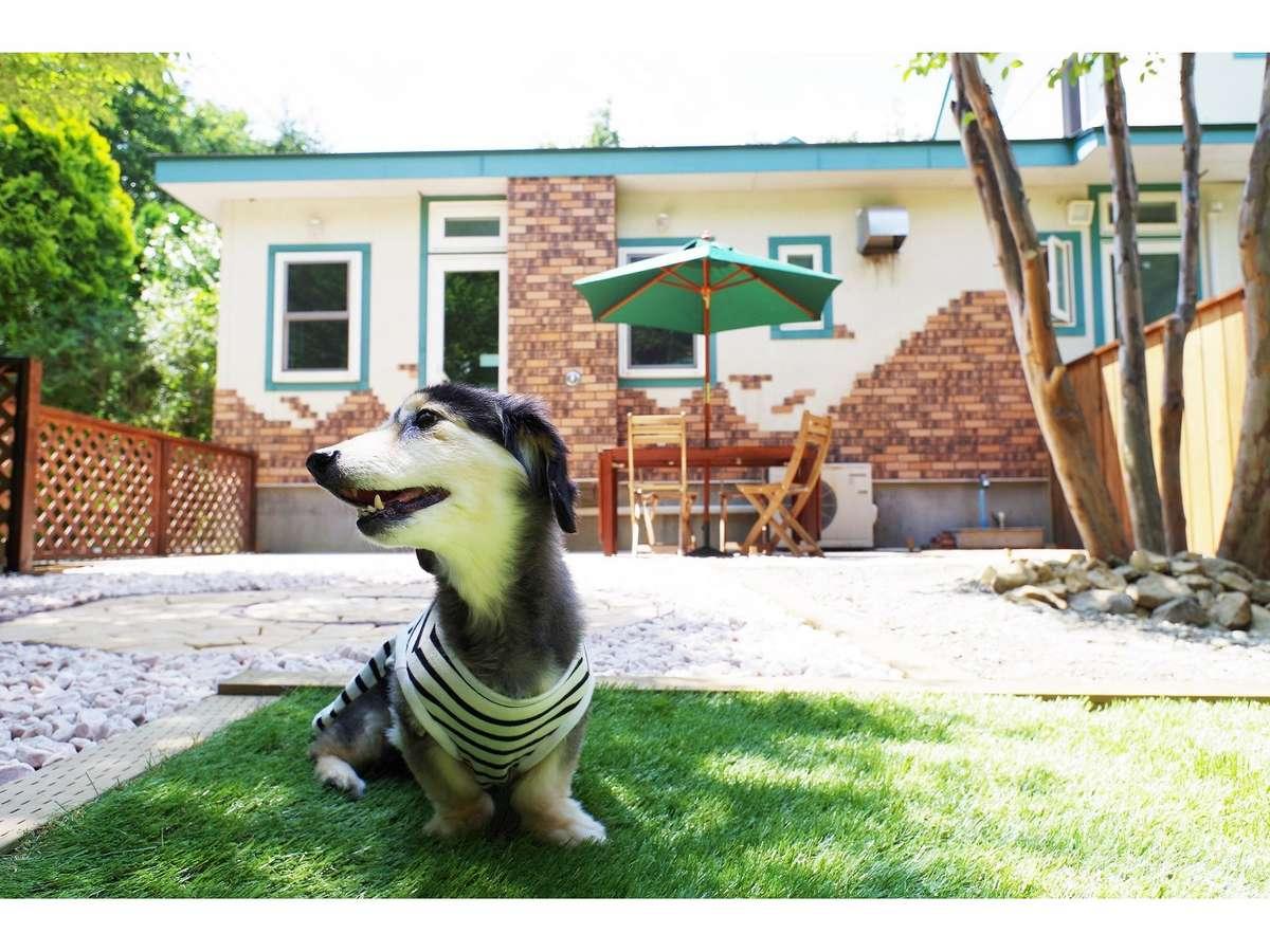 ワンちゃんと同宿できる専用棟があります。ペット連れのお客様も大歓迎です。