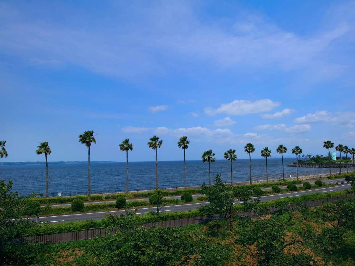 展望デッキからは海が見える絶景スポット。