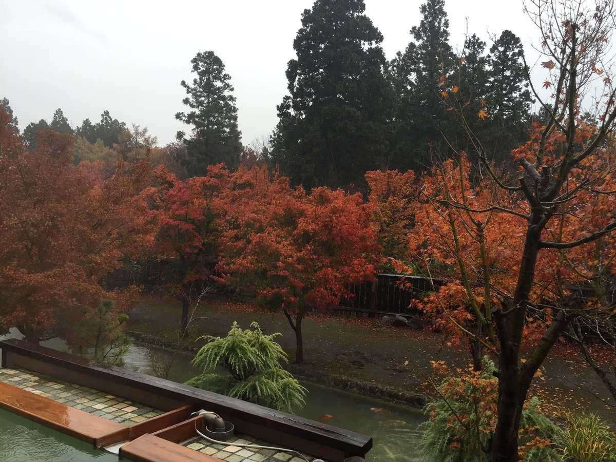 露天風呂と紅葉