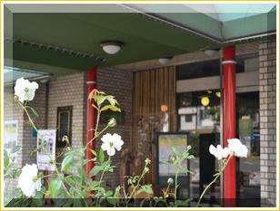 ●当館の前にある駅前大通は福山市のシンボル【バラ】が沢山植えられています。
