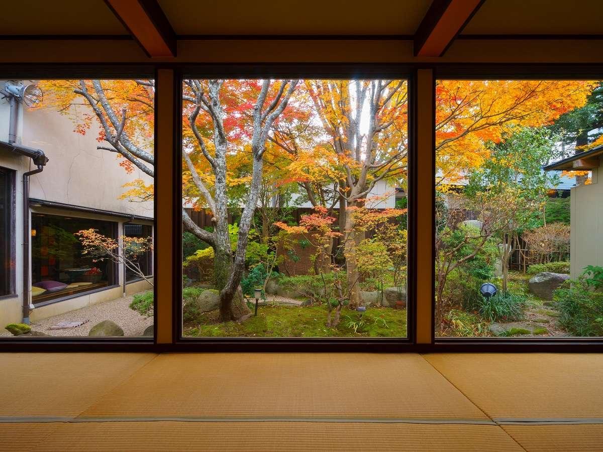 ロビーから見る中庭の風景(秋)。入口をくぐるときれいな風景がお迎えいたします。