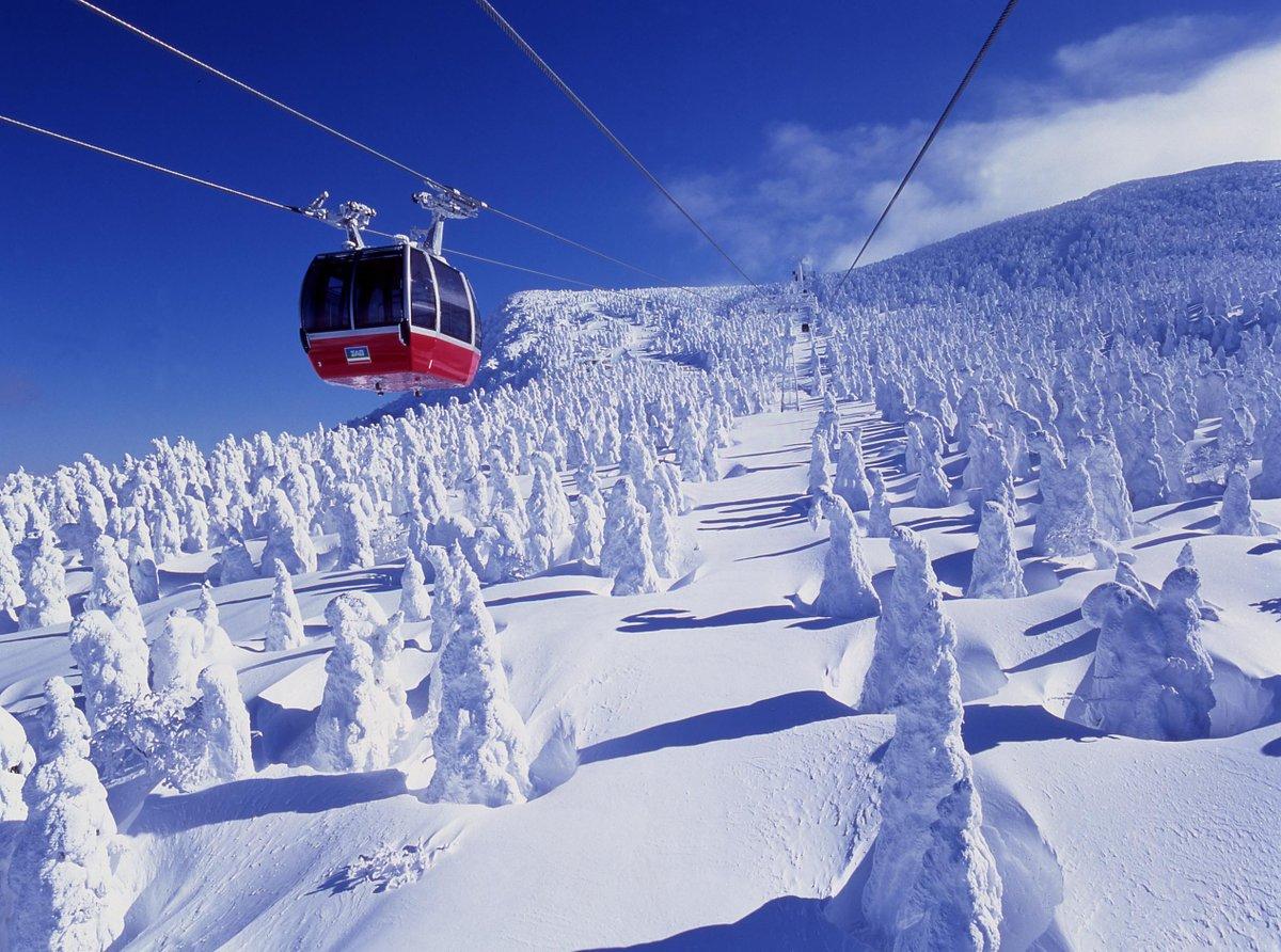 世界でも類を見ない「蔵王の樹氷」 ロープウェイでは雪原を一望出来ます