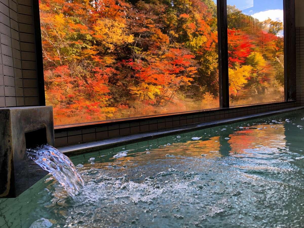 温泉から絶景の紅葉をお楽しみいただけます。