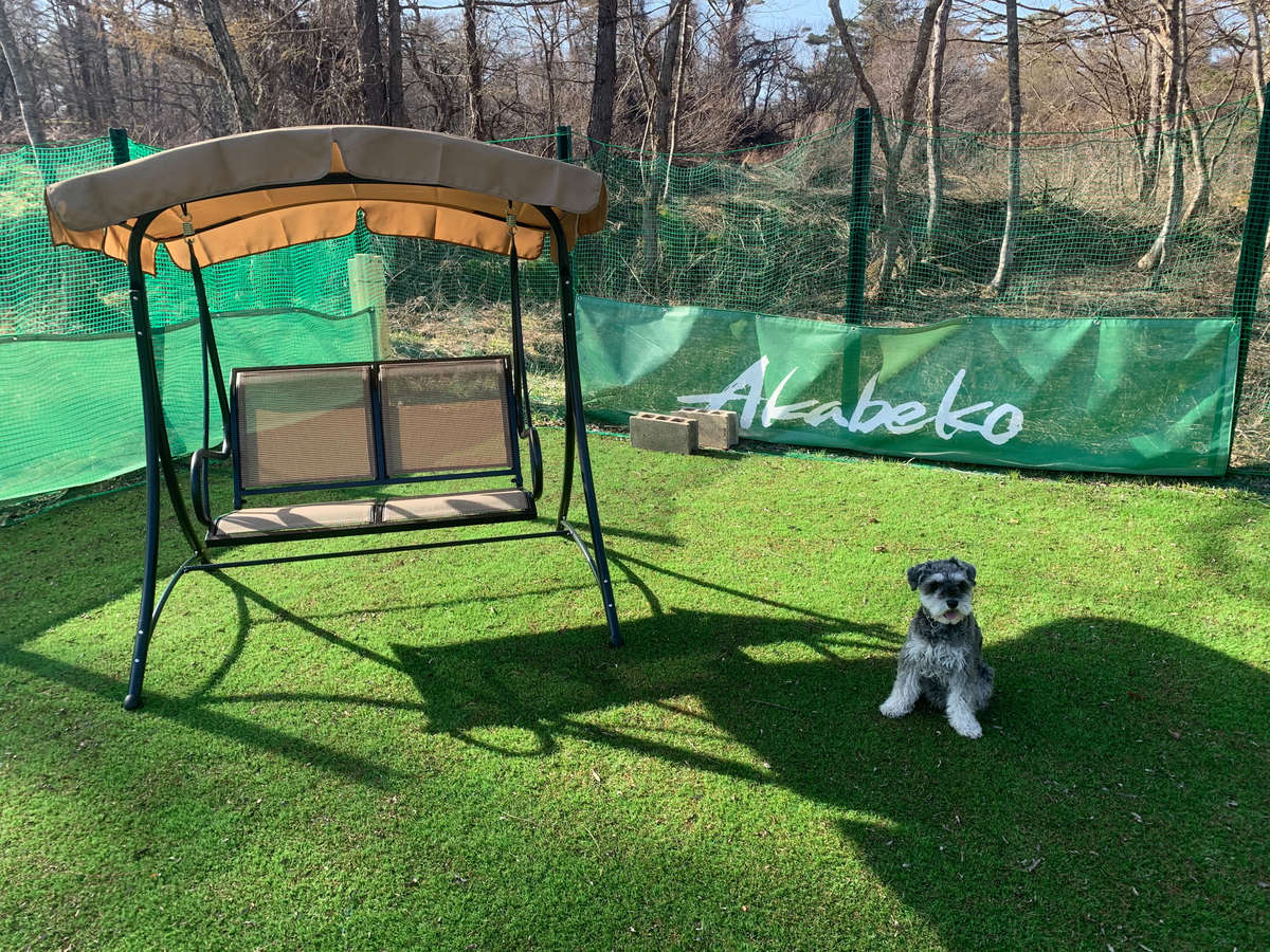 ロッキングチェアを4台設置いたしました!愛犬を眺めながら一休みいただけます。