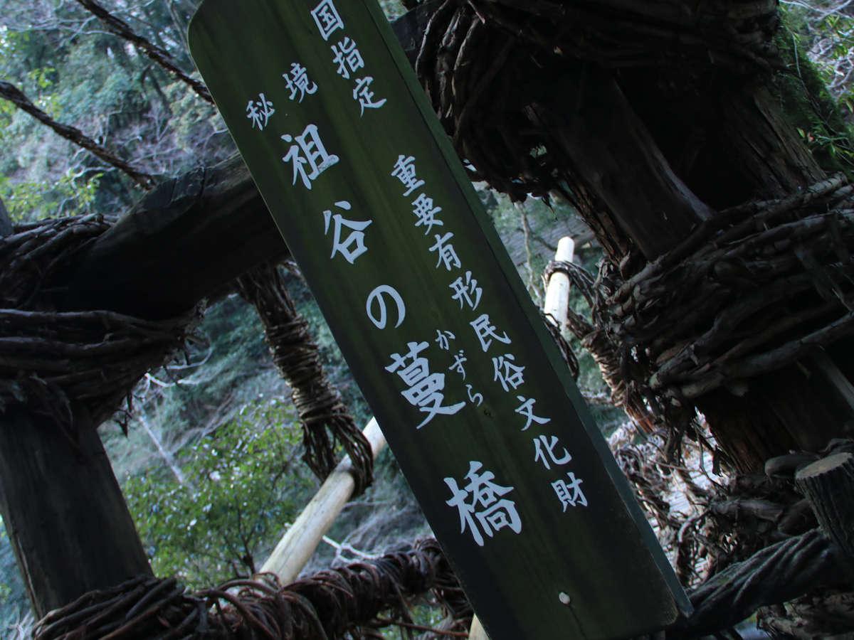 徳島の秘境にあるかずら橋