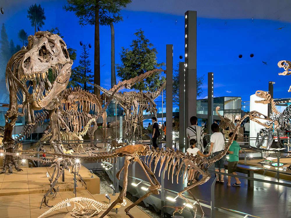 お車で5分、恐竜博物館が人気NO1!
