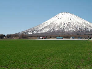 羊蹄山を一望できる最高の立地となっております。