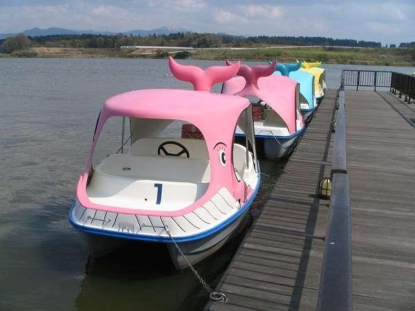 手こぎのボート(北潟湖畔公園)ハミングロード