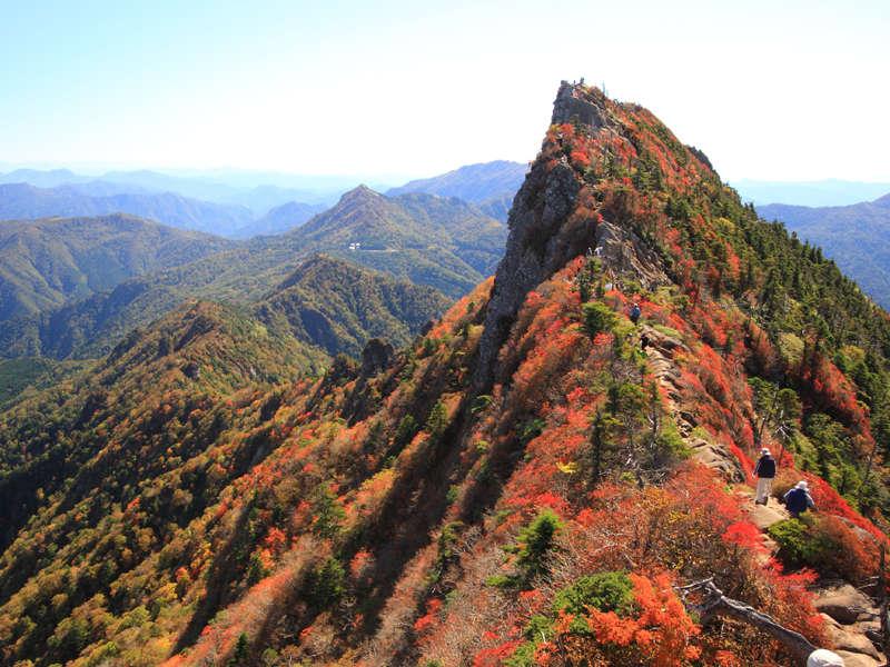 【石鎚山(紅葉)】もみじやかえでが山を美しく彩ります♪ロープウェイで山上へ登るのもおすすめです◎
