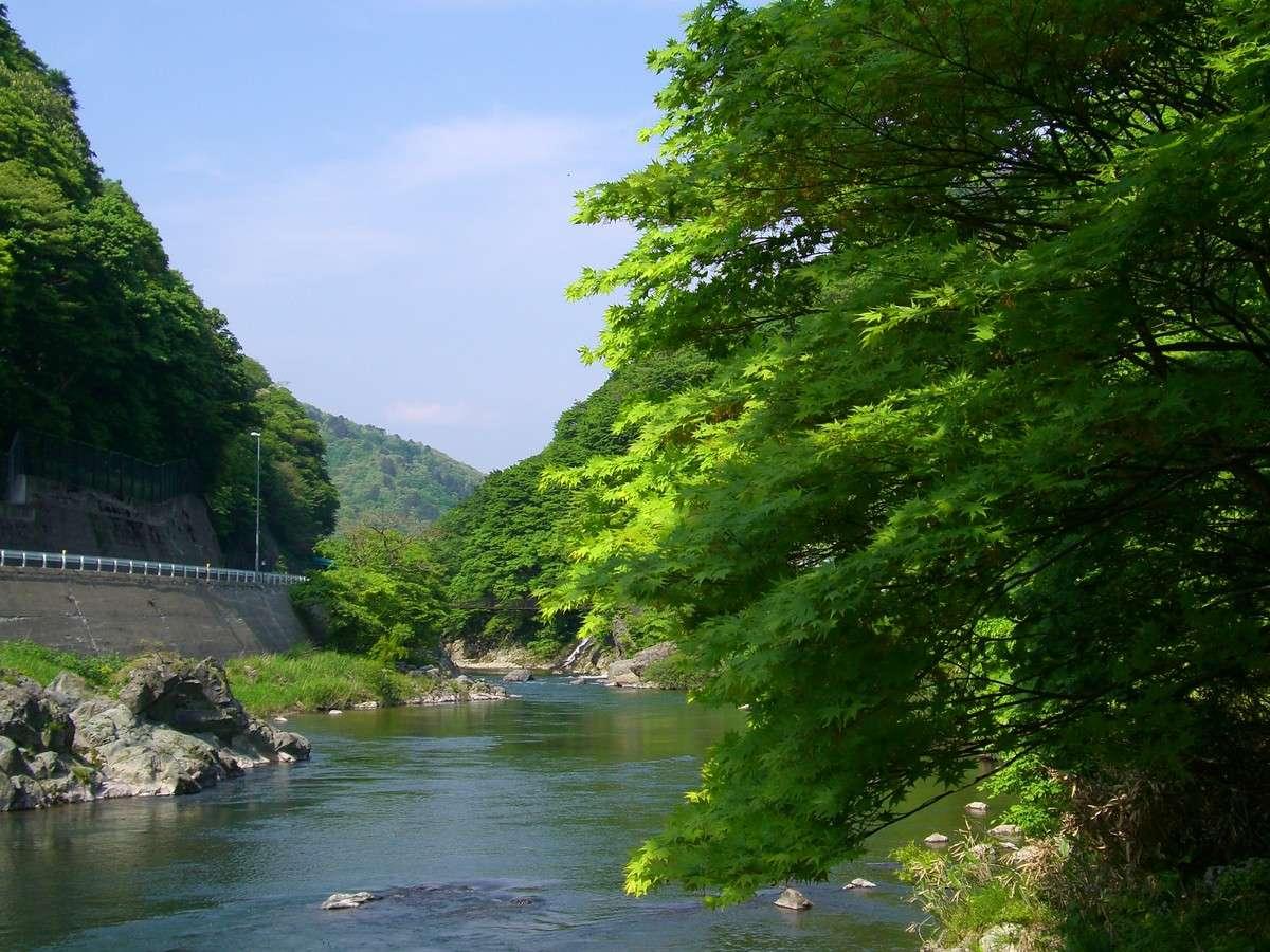 瀬見温泉付近「初夏」